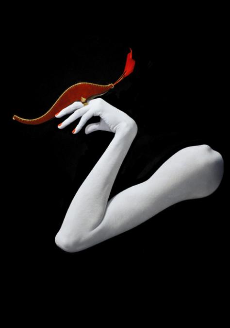 Flamingo by Joji Kojima