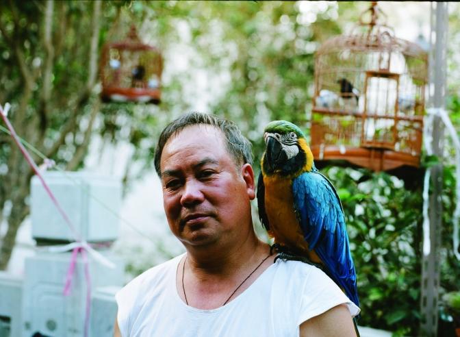 Bird_005