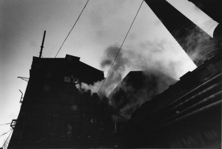 David Lynch, Untitled (Lodz), 2000